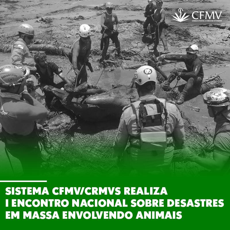 Sistema-CFMV-CRMVs-realiza-I-Encontro-Nacional-sobre-Desastres-em-Massa-Envolvendo-Animais